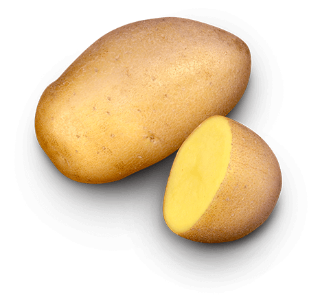 Lady Amarilla potato