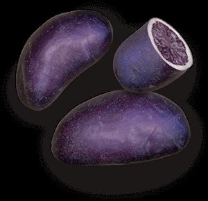 Purple Magic potato