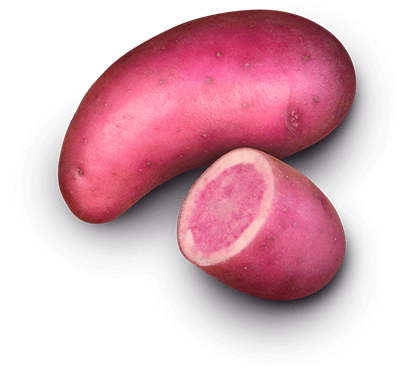 Rosemarie potato
