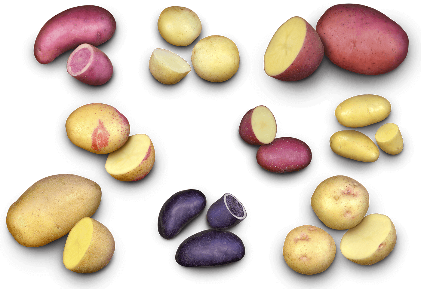 Potato collage