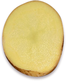 Slice of potato