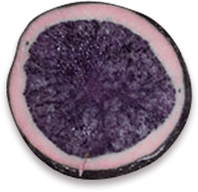 Slice of Purple Magic potato